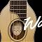 Washburn Rover Travel RO10 - Gitara w sam raz na wakacje.